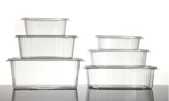 rPET Hinged Clear Containers Range